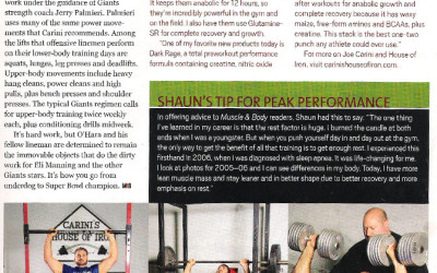 Article_musclebody2